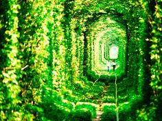 Ukraine's leafy green 'Tunnel of Love' is a passageway for trains and lovers