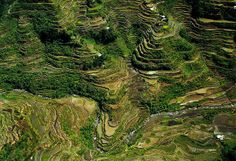 Aerial photographs of rivers and rice terraces in Ifugao, Philippines. http://www.cordilleransun.com/2014/05/12-amazing-aerial-photographs-that-show.html