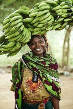 Green Banana Harvest ....