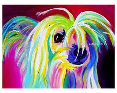 Colorful Pet Portrait Chinese Crested Dog Art Print by dawgpainter, $12.00