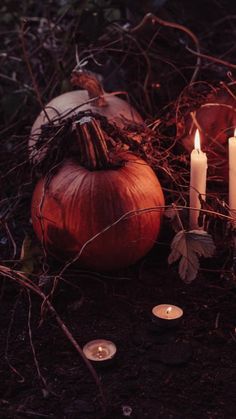 Zara Home, Holiday Calendar, Hacks, Magic Spells, Holidays Halloween, Funny Holidays, Samhain, Signs, Have Time