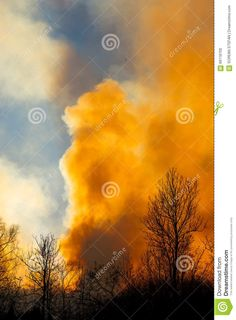 Photo about Forest fire on the spring time, Carphatian Mountains. Image of frozenriver, beach, house - 66118700 Fire Stock, Vectors, Sign, Stock Photos, Beach, Pictures, Free, Image, Photos