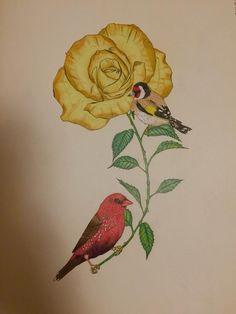 #DaisyFletcher #Birdtopia Daisy, Painting, Art, Craft Art, Daisy Flowers, Paintings, Daisies, Kunst, Gcse Art
