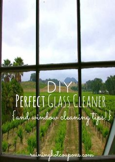 Life is {Sew} Daily: The Best Window Cleaning Tricks Around {or so they say!}