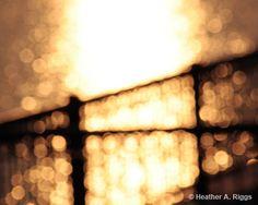 Golden Sunset photography by shyphotog via Etsy #fpoe