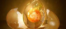 Fantastic Egg Creation