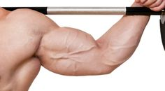 Weider Principles: Split Training to Build Muscle. Devote maximum time to each muscle group.