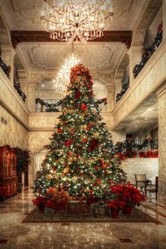 A Beautiful Gallery of Christmas Seasonal Photography Tree at Christmas in a gallery of Seasonal and Christmas Photography Decoration Christmas, Noel Christmas, Christmas Lights, Winter Christmas Scenes, Victorian Christmas, White Christmas, Holiday Decor, Christmas Ideas, Beautiful Christmas Trees