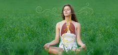 What else can we do to help stimulate the vagus nerve short-term and increase vagal tone long-term? Kundalini Yoga, Pranayama, Cidp, Diaphragmatic Breathing, Yoga Themes, Vagus Nerve, Skeletal Muscle, Meditation Music