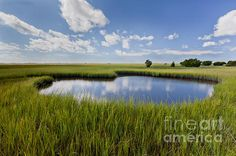 Tidal Pool Photograph by Jo Ann Tomaselli - Tidal Pool Fine Art Prints and Posters for Sale jo-ann-tomaselli.artistwebsites.com #joanntomaselli #fineartphotography #landscapephotography