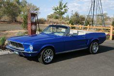 Mustang classic