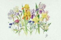 """Watercolour of flowers painted by the Grand Duchess Olga Alexandrovna Romanova of Russia. """"AL"""""""