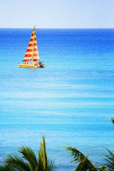 Oahu, Hawaii. We rode on that catamaran! It's the Na Hoku 2.