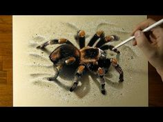 Official site of artist Marcello Barenghi, Hyperrealism, Art Realistic Pencil Drawings, 3d Drawings, Spider Art, Giant Spider, Spider Drawing, 3d Drawing Techniques, 3d Optical Illusions, 3d Painting, Illusion Art