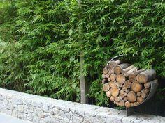 Could consider clumping bamboo as narrow boundary planting for middle courtyards Outdoor Living Furniture, Outdoor Rooms, Outdoor Ideas, Clumping Bamboo, Fargesia, Love Garden, Wooden Garden, Garden Structures, Plant Design
