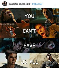 So James decided to kill us Maze Runner Quotes, Maze Runner Funny, Maze Runner Trilogy, Maze Runner Cast, Maze Runner The Scorch, Maze Runner Movie, Maze Runner Series, The Scorch Trials, Book Memes