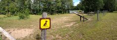 """Mikisew Provincial Park- Dog Exercise Area > One of the coolest dog exercise areas, though the """"dog beach"""" is a tiny sliver. Ontario Parks, Dog Beach, Dog Park, Dog Friends, Summer Fun, Best Dogs, Places To Visit, Hiking, Swimming"""