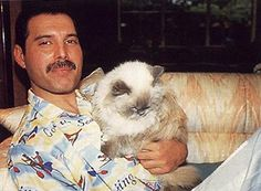 Image detail for -... Cats features, wait for it, photos of celebrities with their feline