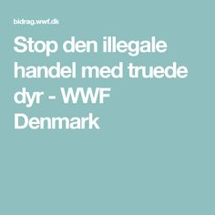 Stop den illegale handel med truede dyr - WWF Denmark