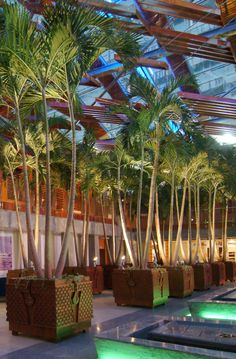Mall Interior Landscape Design * You can find more details by visiting the image link. #traditionalhomedecor