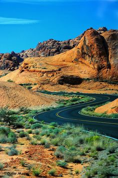 Road in the Valley of Fire, Nevada