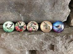 Colorful Bird Magnets (Set of 5),Locker, Fridge, Magnet Board, Kühlschrank,Цветы, magnete, aimant,magneet, magnético, imán, maighnéad,магнит