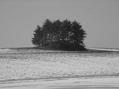 mound builders burial mound near Circleville, Ohio