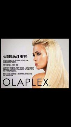 Olaplex.