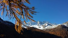 Gran Paradiso National Park, Levanne Mountains, Ceresole Reale (Italy)