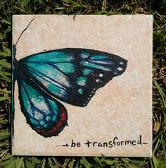 Be Transformed  Butterfly  art   on 6 x 6  by ScribbleSketches, $14.00