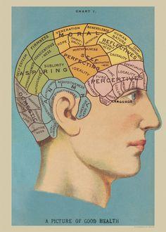Poster Print With Hanging Kit - Phrenology Wrap