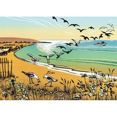 'Seagulls On The Bay' by Rob Barnes. Blank Art Cards By Green Pebble.  www.greenpebble.co.uk