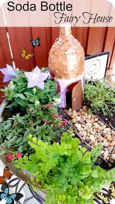 Soda Bottle Fairy Garden - use a recycled 2L soda bottle for a new fairy house