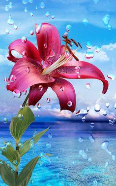 Nyári Eső Virágok HD háttérkép – képernyőfelvétel
