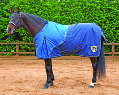 Whitaker Medium Weight Turnout Rug 600D outer Nylon lined with 200g polyfill D-Rings for matching neck cover Size 5 6 - 6