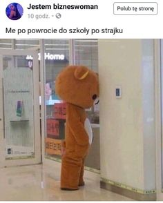 Image in memes collection by v on We Heart It Cute Memes, Dankest Memes, Funny Memes, Baby Memes, Reaction Pictures, Funny Pictures, Memes Lindos, Rilakkuma, Wholesome Memes