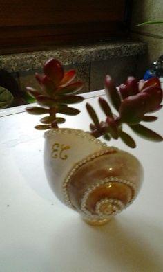 Seashell      conchiglia abbellita con perline e trasformata in porta piantina. Sul fondo per creare una base stabile ho incollato un bottone magnetico (quello delle tende). Solo foto. Handmade by Daniela Pesel