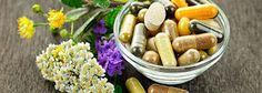Doctor Natura: Care este deosebirea dintre fitoterapie si gemoter...