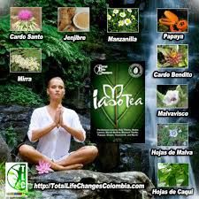 Image result for iaso tea Call me with questions!  Www.totallifechanges.com/tietea Rep ID #3062471 240-528-8325