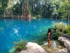 These blue holes are why you need to visit #Vanuatu #travel