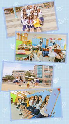 Phone Screen Wallpaper, Rose Wallpaper, Tumblr Wallpaper, Iphone Wallpaper, Kpop Girl Groups, Kpop Girls, Back To School Wallpaper, Kpop Girl Bands, Twice Fanart