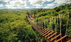 ClimbWorks @ Keana Farms, Oahu HI