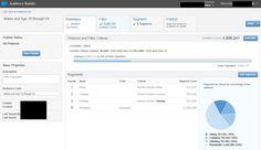 Salesforce Marketing Cloud Audience Builder
