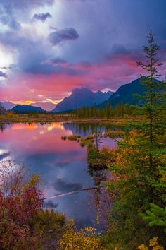 What To Do and See at Banff National Park, Alberta, Canada ☮ * ° ♥ ˚ℒℴѵℯ cjf Landscape Photos, Landscape Photography, Nature Photography, Photography Tips, Scenic Photography, Photoshop Photography, Photography Magazine, Aerial Photography, Night Photography