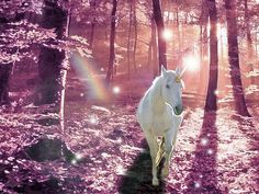 unicorn in the pink forest