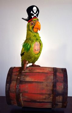 Will never own. But possibly the best statue ever created, anchor tattoo on a parrot!