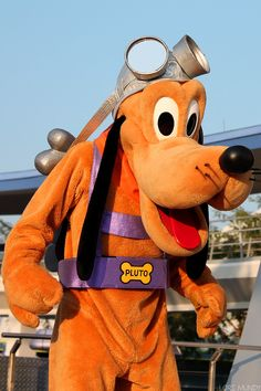 Disney flying Pluto at the Disney theme parks Disney Characters Costumes, Disney World Characters, Disney Movies, Face Characters, Disney Magic, Walt Disney, Disney Theme, Pluto Disney, Vintage Disneyland