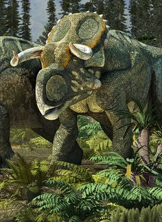 Nasutoceratops tittusi (detail) | Román García Mora