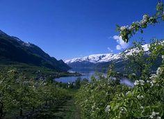 Lofthus, Hardangerfjord, Norway.