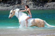 D1] Swim Bareback and Bridleless, can help to have an initial safety. #horse